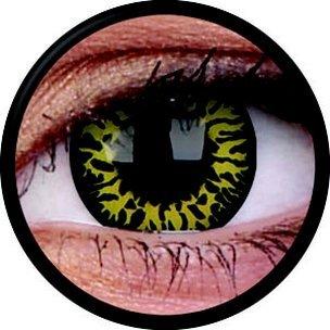 Yellow Eclipse (Jahreslinse) (1x2)